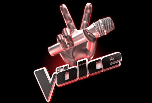 The Voice Of Germany 2021 Anmeldung