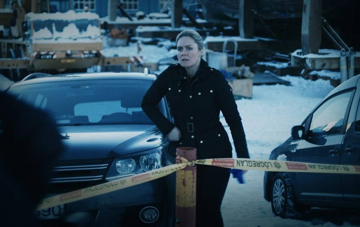 Valhalla Murders Kritik