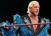 WWE Ric Flair
