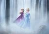 """Für """"Frozen 2"""" kehren Anna und Elsa im November auf die Leinwand zurück."""