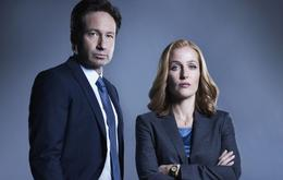 """Akte X"" Dana Scully Fox Mulder"