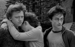 """""""Harry Potter"""": Diese Stars sind bereits verstorben"""