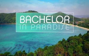 """""""Bachelor in Paradise"""": Es gibt noch mehr Kandidaten!"""
