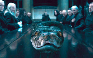 Harry Potter: Nagini