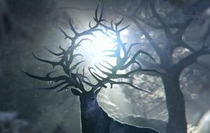 """Shadow and Bone"" Staffel 2: Start, Inhalt und DarstellerInnen 