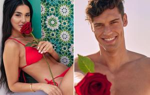 Bachelor in aradise Donya und Miro