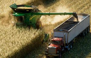 Szene aus Landwirtschafts-Simulator 22: Mähdrescher und LKW ernten ein Maisfeld ab.