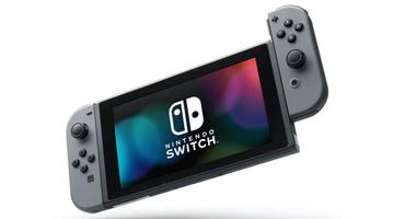Nintendo Switch Handheld
