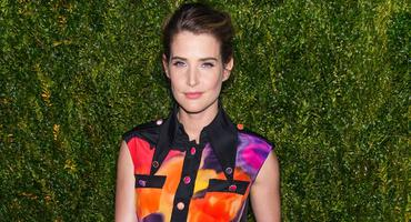 Cobie Smulders, How I Met Your Mother, The Avengers