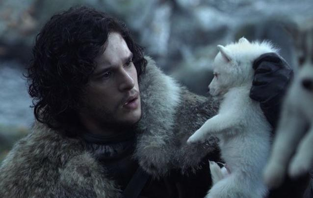 """Game of Thrones"": Jon Snow - Jon Schnee- Kit Harington - Geist - Ghost - Schattenwolf"
