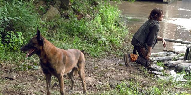 The Walking Dead Season 9 Dog