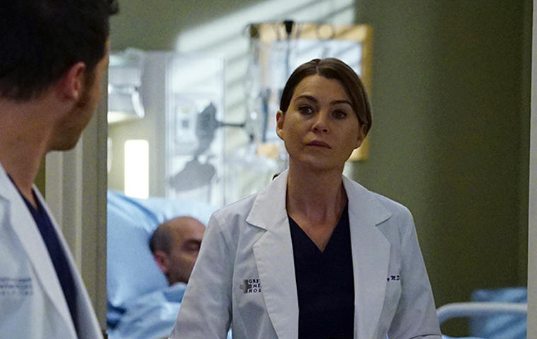 Grey's Anatomy, Staffel 14
