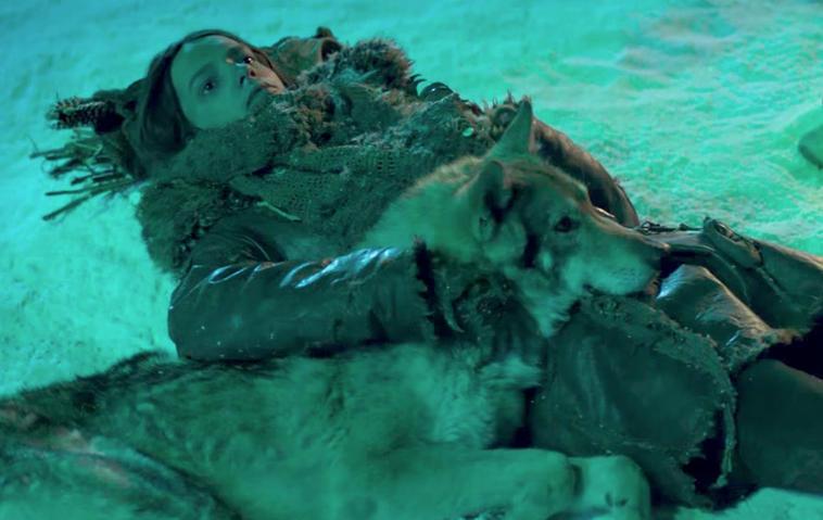 """Tierschützer klagen an: Für den Film """"Alpha"""" wurden Bisons getötet"""