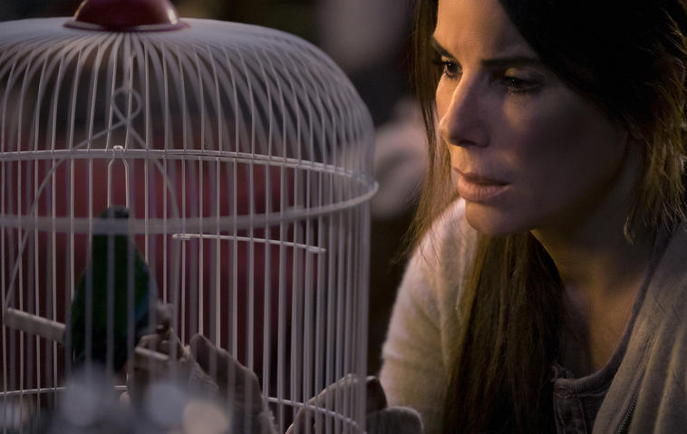 Netflix Bird Box: Sandra Bullock