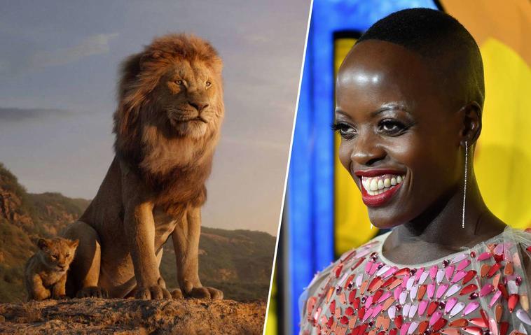 König Der Löwen Heute Im Tv