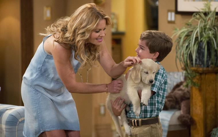 """""""Fuller House""""-Hund Cosmo ist tot"""