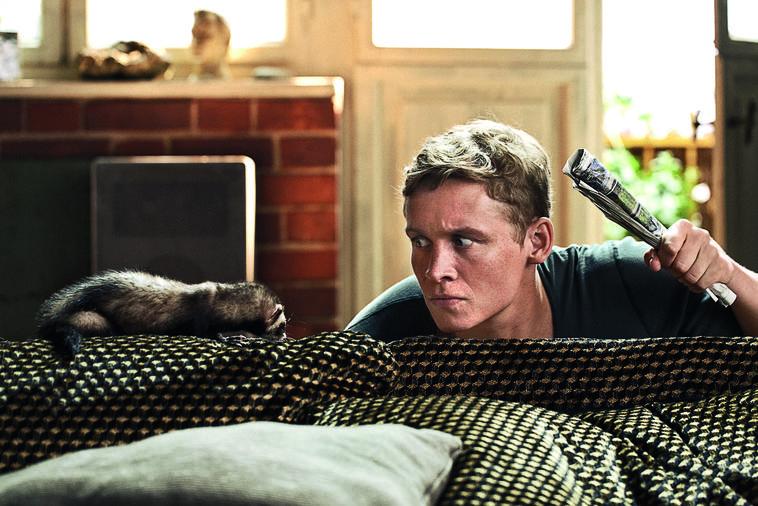 Ein Frettchen in der Wohnung? Ob das so eine gute Idee von Junggeselle Felix (Matthias Schweighöfer) war?