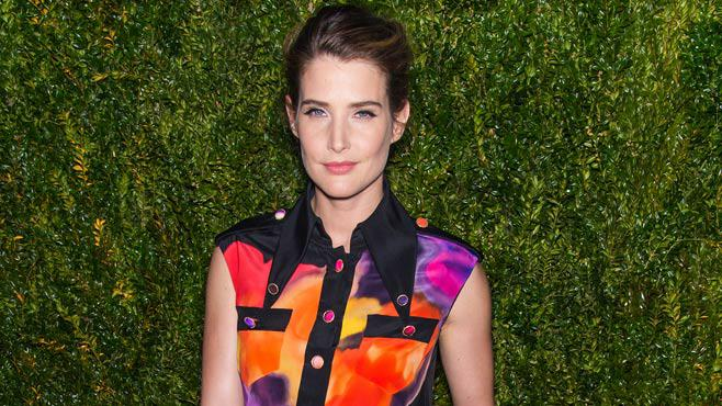 himym star cobie smulders in netflix friends from college. Black Bedroom Furniture Sets. Home Design Ideas