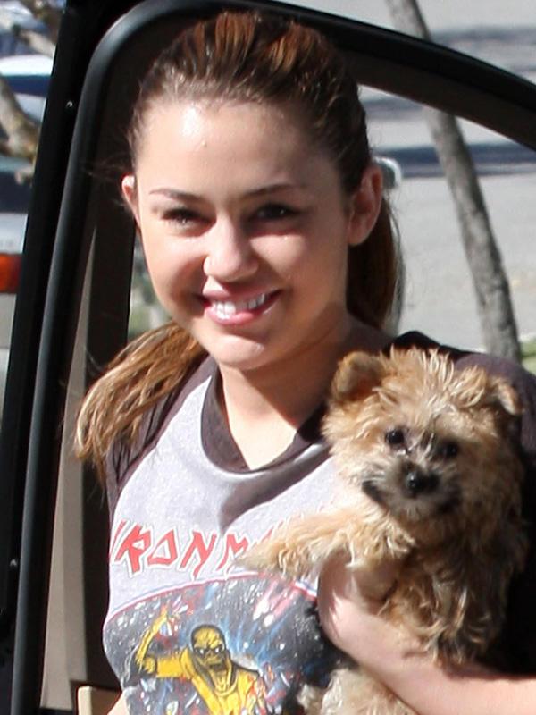 Geschwister? Nein, das ist Miley Cyrus mit ihrem Hündchen. Trotzdem: Beide sehen irgendwie knuffig aus..